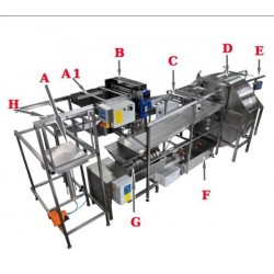 Automatic honey extraction line - full version
