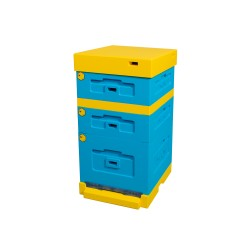 Dadant Beehive with low bottom board, painted